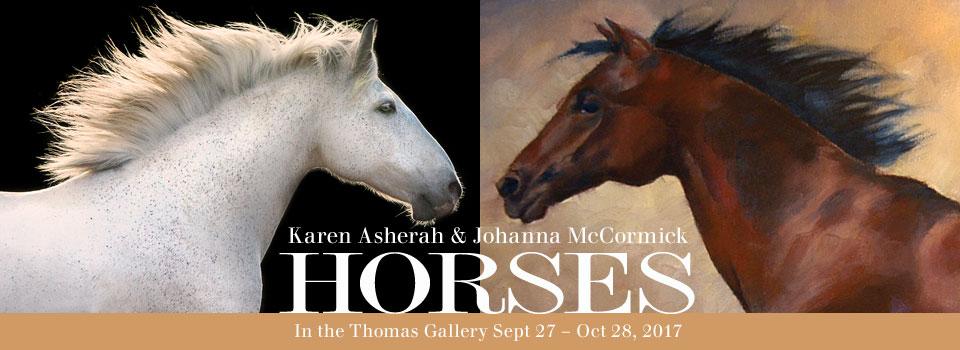 HorsesWebHeader
